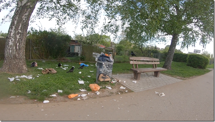 20190424-Müll-Nidda-Raben